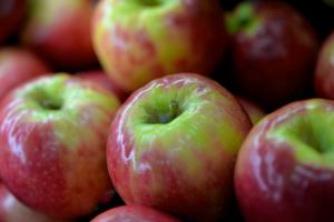 Tasty apples from Malibu Fresh in Rockingham