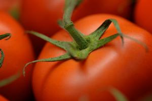 Seasonal tomatoes from Malibu Fresh in Rockingham