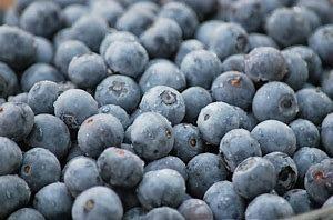 frozen bberries